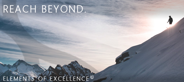 elements-of-excellence